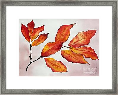 Autumn Framed Print by Shannan Peters