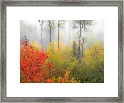Autumn Silence Framed Print by Leland D Howard