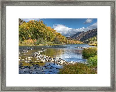 Autumn Stance Framed Print by Britt Runyon