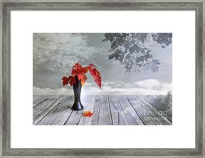 Autumn Still Life Framed Print by Veikko Suikkanen