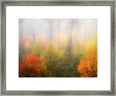 Autumn Stillness 2 Framed Print by Leland D Howard