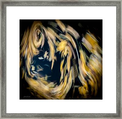 Autumn Storm Framed Print by Steven Milner