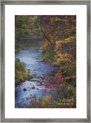 Autumn Stream Framed Print by Michele Steffey