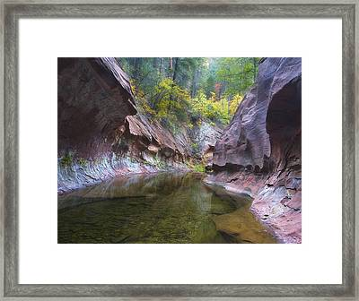 Autumn Subway Framed Print by Peter Coskun