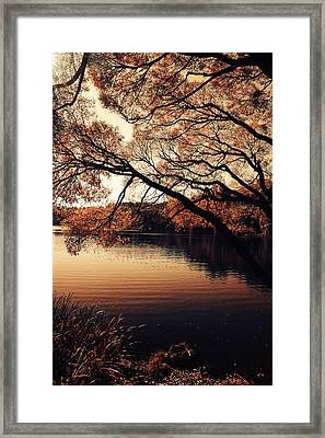 Autumn Time At The Lake Framed Print by Jenny Rainbow