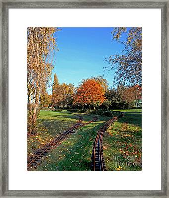 Autumn Tracks Framed Print by Terri Waters