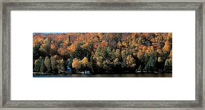 Autumn Trees Laurentide Quebec Canada Framed Print by Panoramic Images