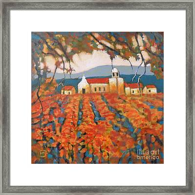 Autumn Vineyard Framed Print by Kip Decker