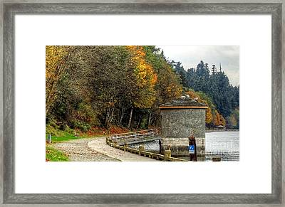 Autumn Walk Framed Print by Chris Anderson