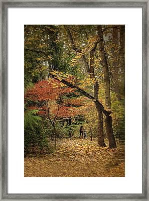 Autumn Walk Framed Print by Diane Schuster