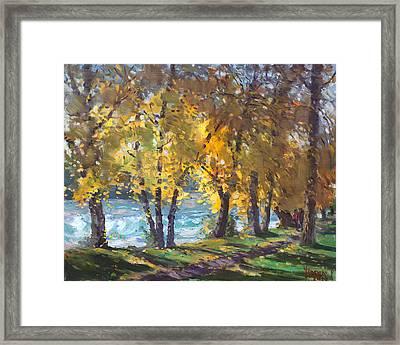 Autumn Walk Framed Print by Ylli Haruni