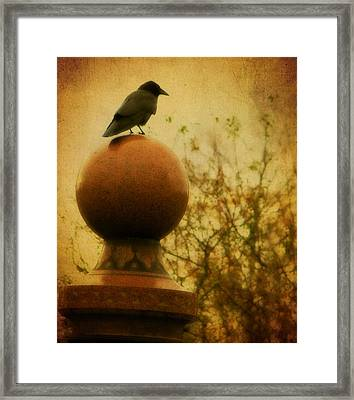 Autumn Wash Framed Print by Gothicolors Donna Snyder