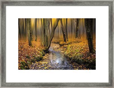 Autumn Woodland Framed Print by Ian Hufton