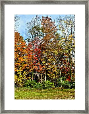 Autumnal Foliage Framed Print by Frozen in Time Fine Art Photography