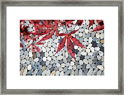 Autumnal Zen Framed Print by Delphimages Photo Creations
