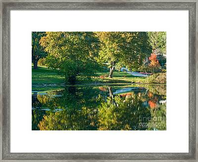 Autumns Beauty Framed Print by Optical Playground By MP Ray