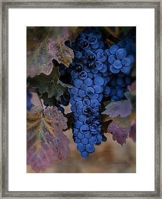 Autumn's Bounty Framed Print by Nancy D Hall