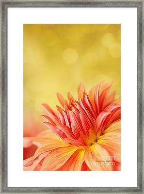 Autumns Calling Card Framed Print by Beve Brown-Clark Photography