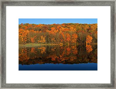 Autumns Colorful Reflection Framed Print by Karol Livote