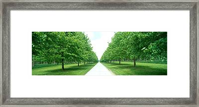 Avenue At Chateau De Modave Ardennes Framed Print by Panoramic Images