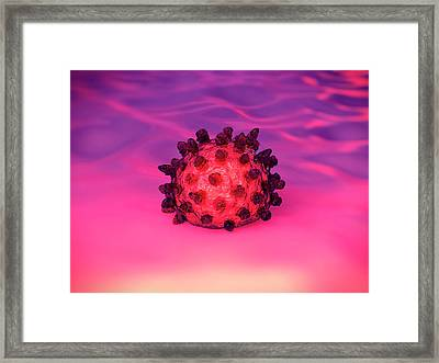 Avian Flu Virus Framed Print by Science Artwork