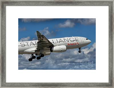 Avianca Star Alliance Airbus A-330 Framed Print by Rene Triay Photography