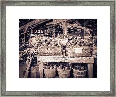 Avila Framed Print by Caitlyn  Grasso