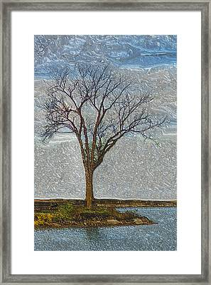 Awaiting Change Framed Print by Jack Zulli