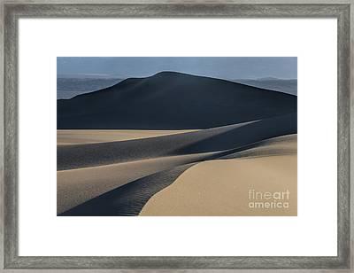 Awakening  Framed Print by Sandra Bronstein