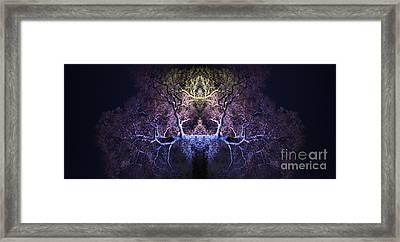 Awakening Framed Print by Tim Gainey
