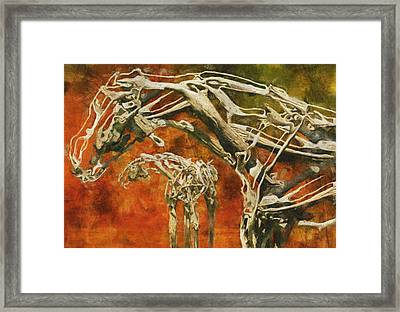 Aware Framed Print by Jack Zulli