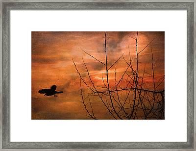 Away Home Framed Print by Kathy Bassett