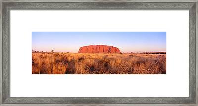 Ayers Rock, Uluru-kata Tjuta National Framed Print by Panoramic Images