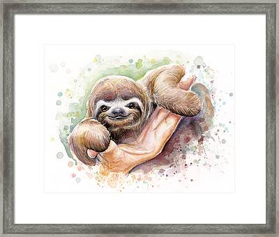 Baby Sloth Watercolor Framed Print by Olga Shvartsur