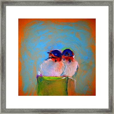 Baby Swallows Framed Print by Sue Jacobi