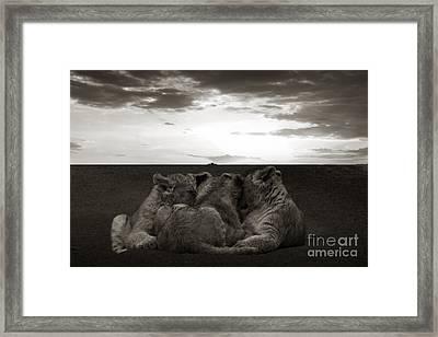 Babylions Framed Print by Christine Sponchia