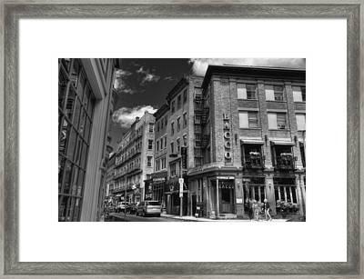 Bacco In Black And White Framed Print by Joann Vitali