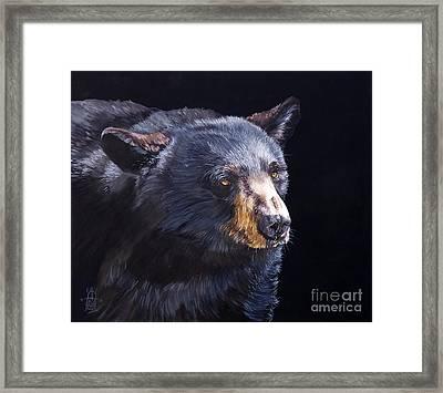 Back In Black Bear Framed Print by J W Baker
