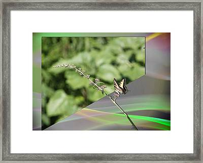 Back To Reality Framed Print by EricaMaxine  Price