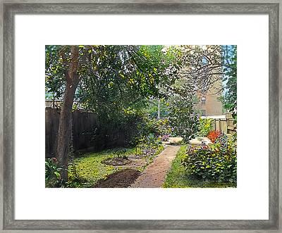 Back Yard Framed Print by Terry Reynoldson