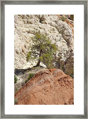 Backroads Utah 5 Framed Print by Mike McGlothlen