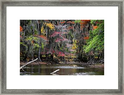 Backwater Autumn Framed Print by Lana Trussell