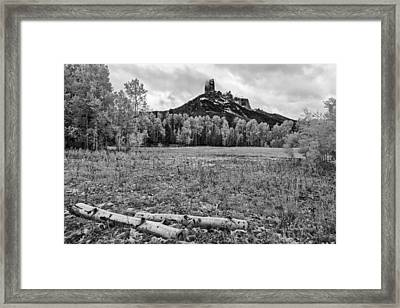 Backyard Thoughts Framed Print by Jon Glaser