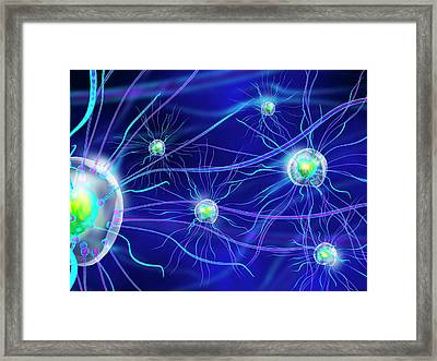 Bacteria Framed Print by Harvinder Singh