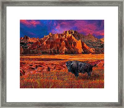 Badlands Bison American Icon Framed Print by Michele  Avanti