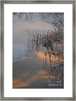 Balance Of Elements Framed Print by Simona Ghidini
