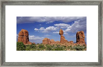 Balancing Act Framed Print by Kitrina Arbuckle