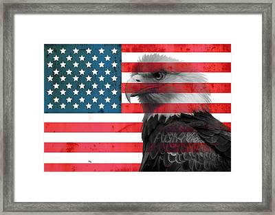 Bald Eagle American Flag Framed Print by Dan Sproul