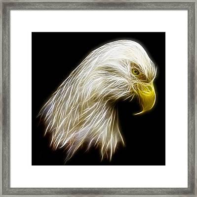 Bald Eagle Fractal Framed Print by Adam Romanowicz
