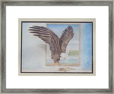 Bald Eagle Having Lunch Framed Print by Parmjit Gill